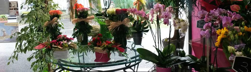 fleuriste angoul me livraison fleurs domicile angoul me. Black Bedroom Furniture Sets. Home Design Ideas